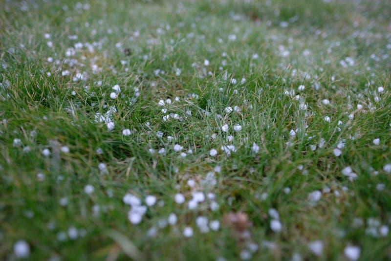 hagelstenen stock afbeelding