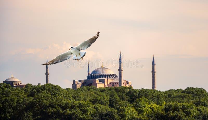 Hagia Sophia, el monumento famoso foto de archivo