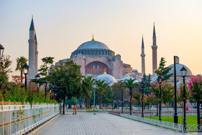 Hagia Sophia kupoler och minaret i den gamla staden av Istanbul, Turkiet arkivbild