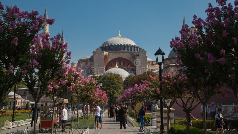 Hagia Sophia, mosquée et musée, basilique chrétienne, en parc de Sultanahmet à Istanbul, la Turquie images stock