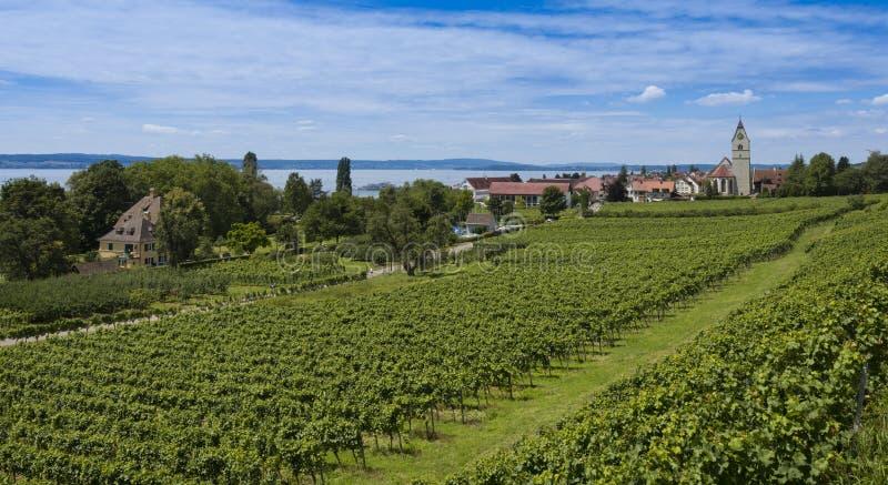 Hagnau - lago Constance, Baden-Wuerttemberg, Alemanha, Europa imagem de stock royalty free