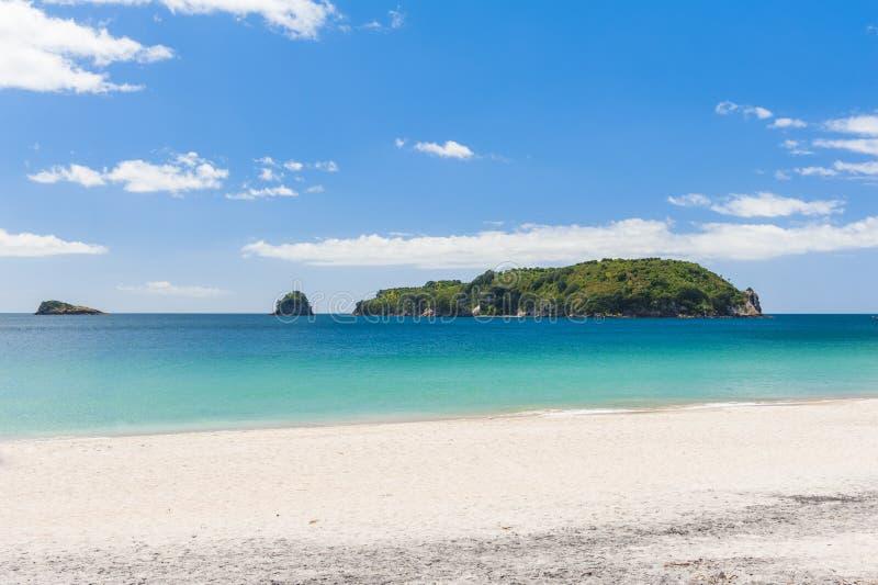 Hahei-Strand an Coromandel-Halbinsel auf Neuseeland stockfotografie