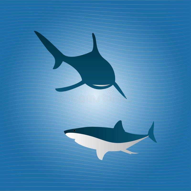 Haifische auf dem Meer für die Jagd stockbilder