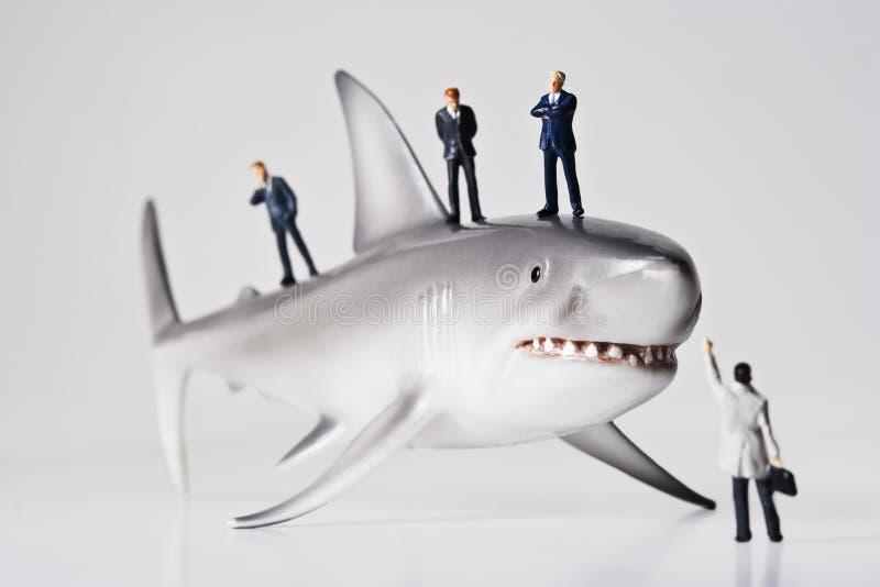 Haifische im Geschäft stockbild