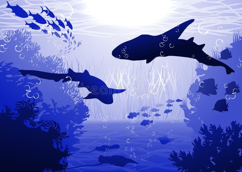 Haifische Unterwasser lizenzfreie abbildung
