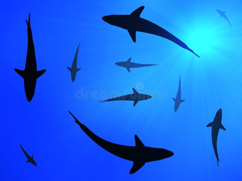 Haifischhintergrund stock abbildung