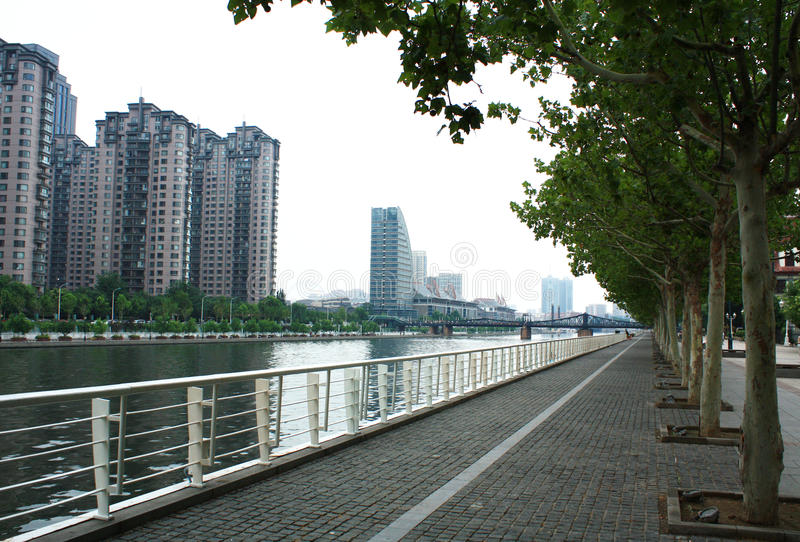 Haihe River side. This is a picture of Tianjin Haihe River side royalty free stock images