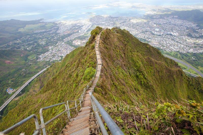 Haiku stairs trail, Hawaii stock images