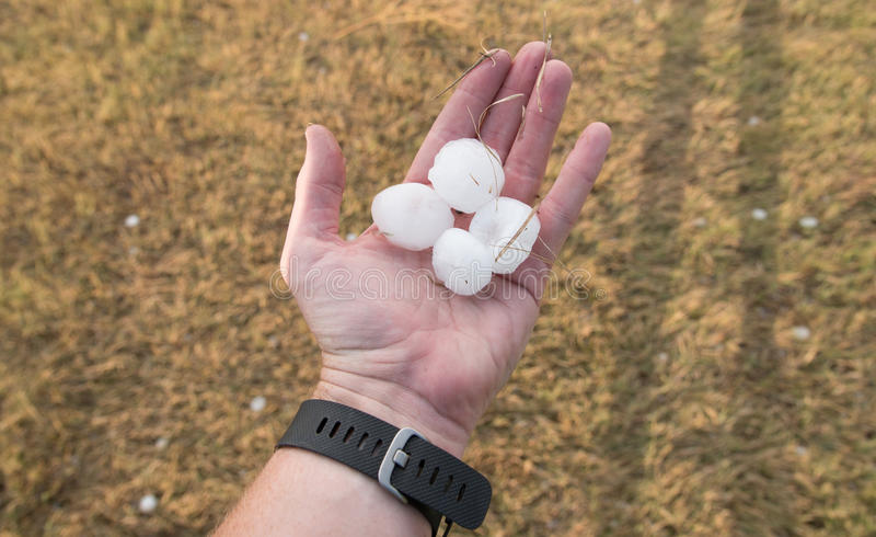 Hail Stones in Hand. Four golf ball sized hail stones cover the hand of a large adult, who holds them out over the hail covered ground stock image