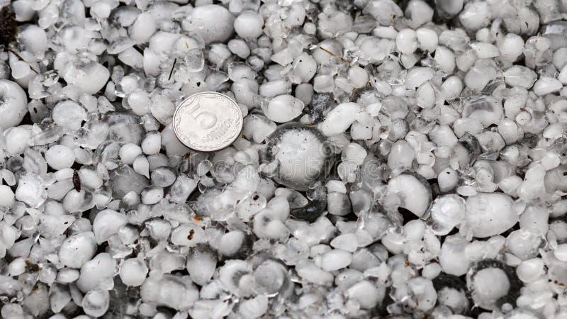 Оклик с определенными размерами с более большой монеткой, градины на том основании после hailstorm, оклика большего размера стоковое фото rf