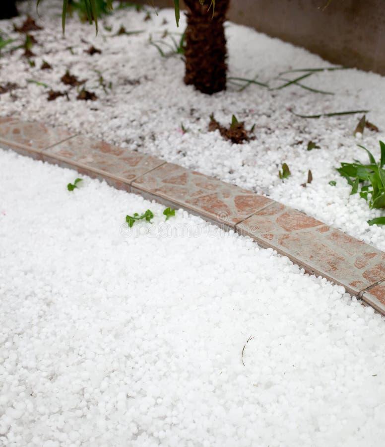 Hailstorm in de tuin royalty-vrije stock afbeeldingen