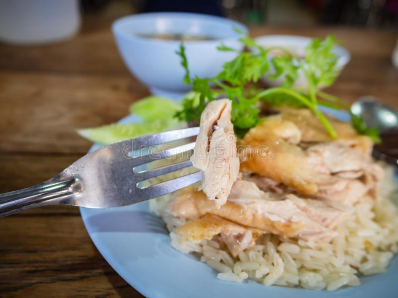 Hainanese kurczaka ryż, Tajlandzki smakosz dekatyzowali kurczaka z ryż, bobowy kumberland i zdjęcia stock