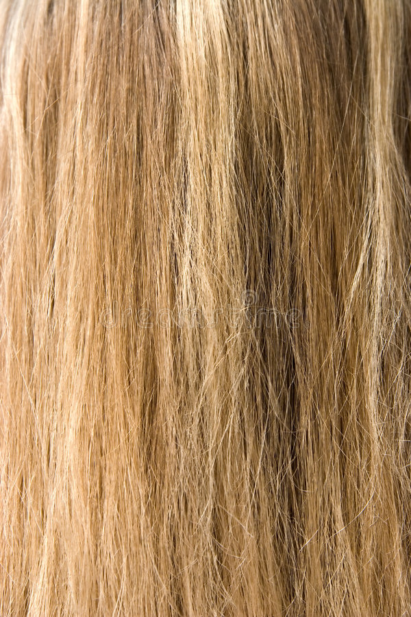 Hair. Woman long blond hair texture stock photos