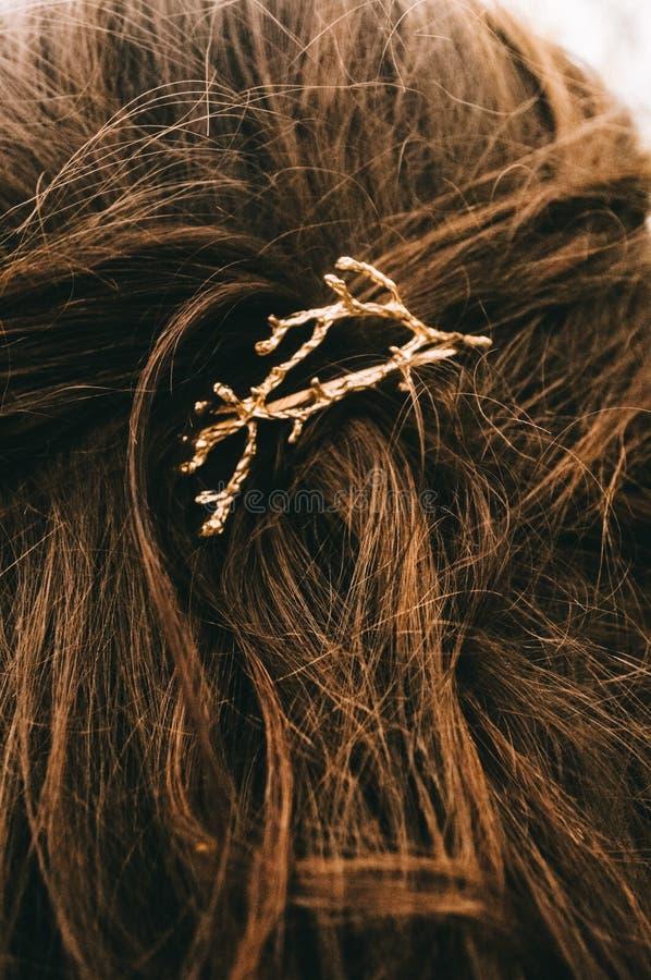 Hair beautiful hairpin royalty free stock image