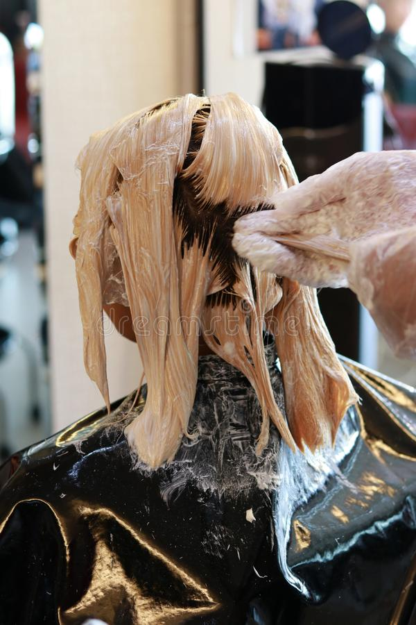 Hair bleaching in back view portrait. Hairdresser hand pulling some hair and applying color bleaching cream in salon stock photography