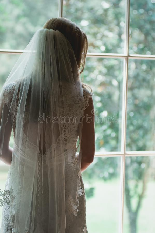 Hair, Bridal Veil, Bridal Accessory, Gown stock photography