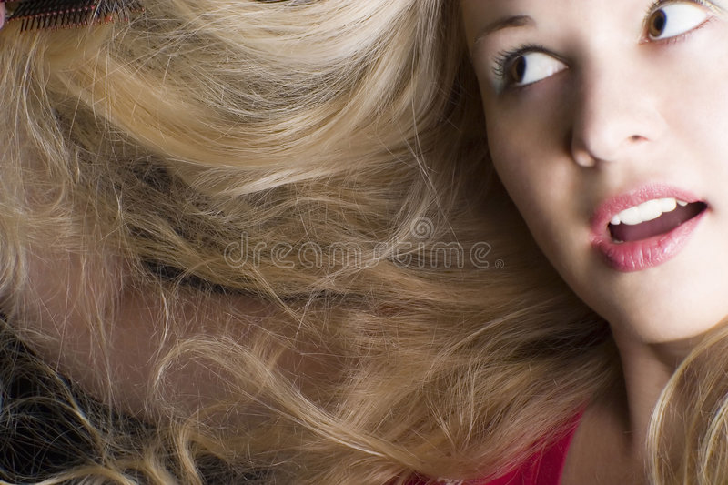Download Hair care stock photo. Image of woman, face, hair, young - 4818744