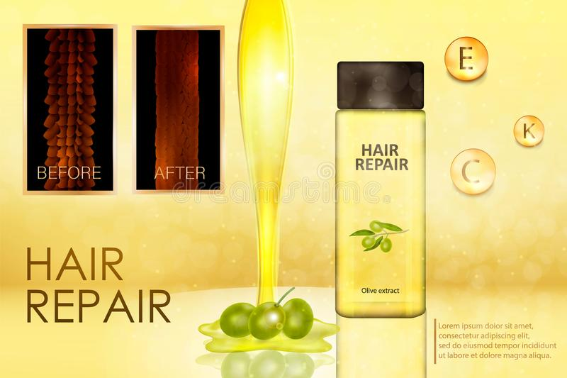 Hair care product with an extract of olives. Hair before and after application of the product. Hair care product with an extract of olives. The concept of hair vector illustration