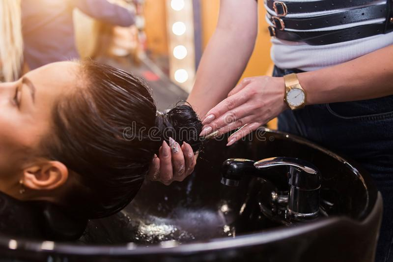 Hair care, hair salon, cosmetology, beauty salon royalty free stock photo