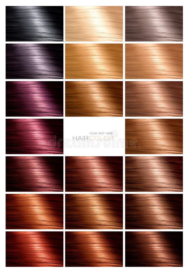 Hair color palette with a range of swatches stock image