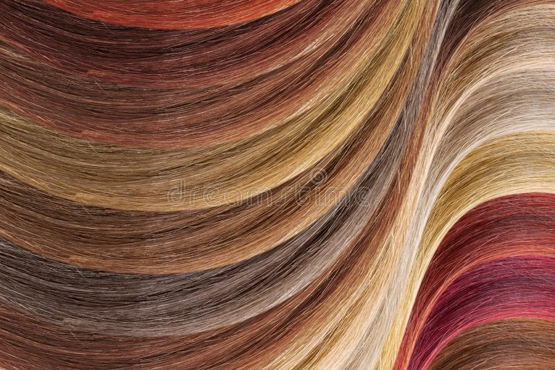 Hair colors palette as background. Dyed samples. Background made from natural healthy hair. Detailed clipart for your collages and illustrations. Palette royalty free stock images