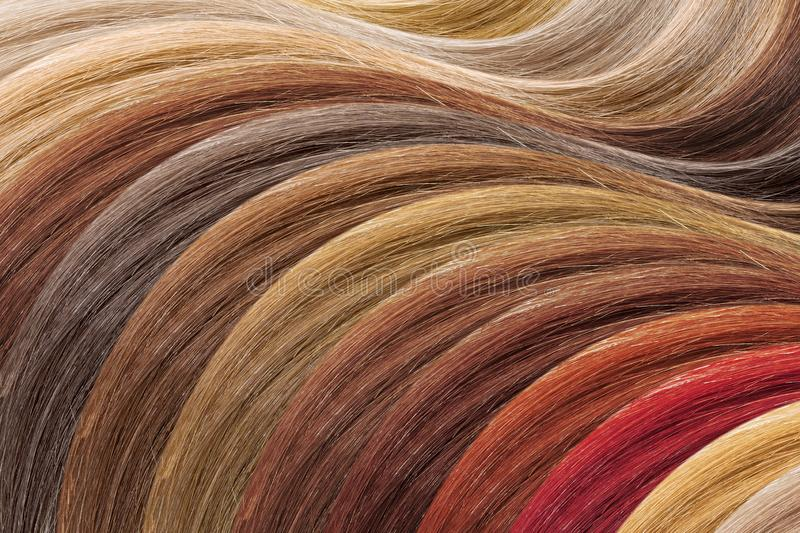 Hair colors palette as background. Dyed samples royalty free stock images