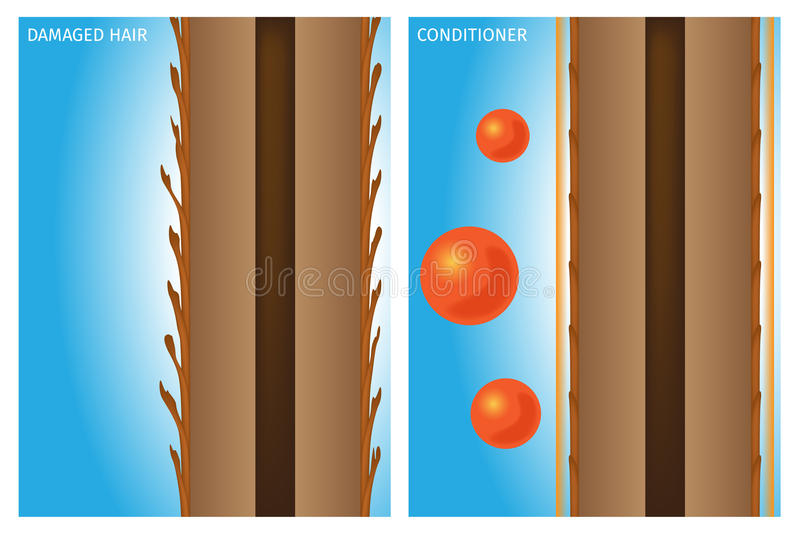 Hair conditioner. On blue background royalty free illustration