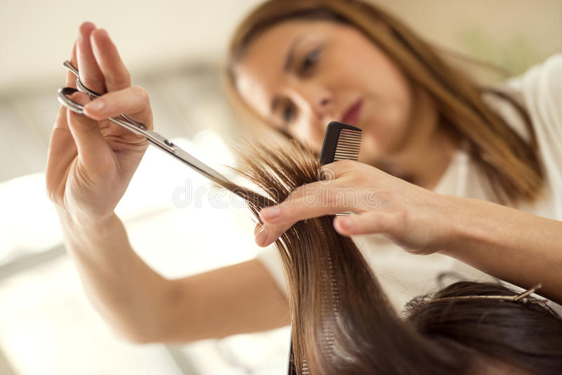 Hair cutting royalty free stock photo