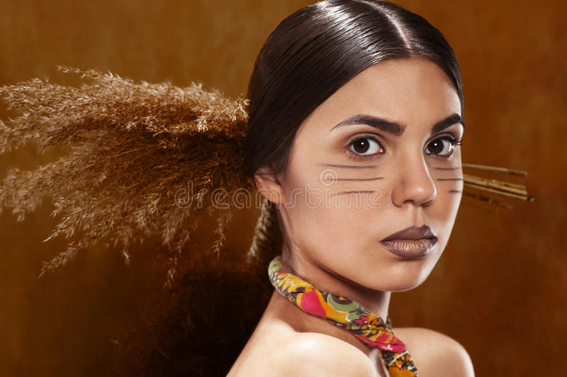 Hair in the ethnic style royalty free stock image