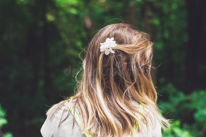 Hair, Hairstyle, Girl, Headpiece Free Public Domain Cc0 Image