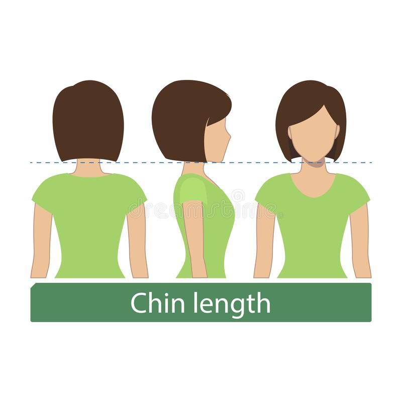 Chin length hair. Hair length for haircuts and hairstyles - chin length. Vector royalty free illustration