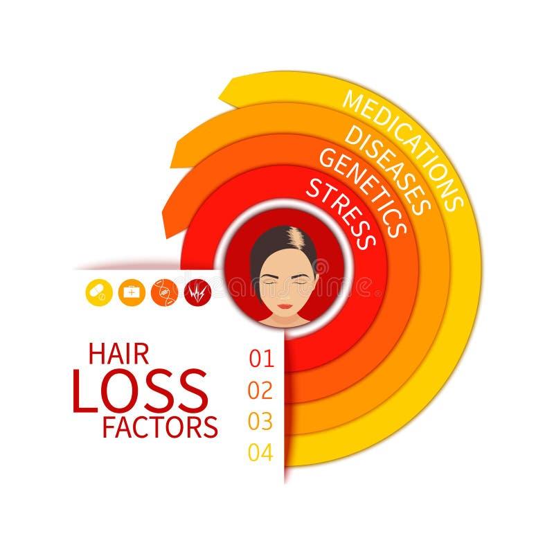 Hair loss factors chart. Hair loss risk factors infographic arrow medical chart. Four hair loss reasons - stress, genetics, diseases and medications. Female hair stock illustration