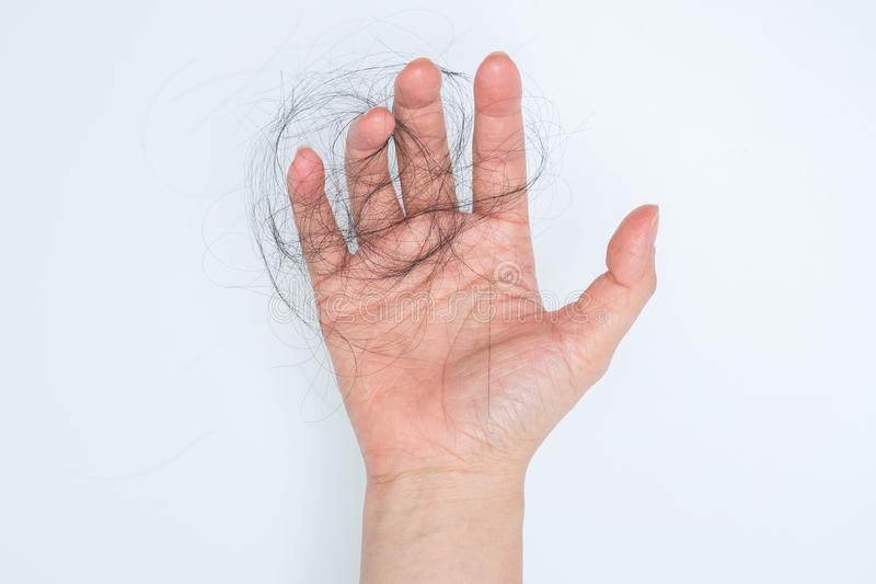 Hair loss in woman hand royalty free stock photography