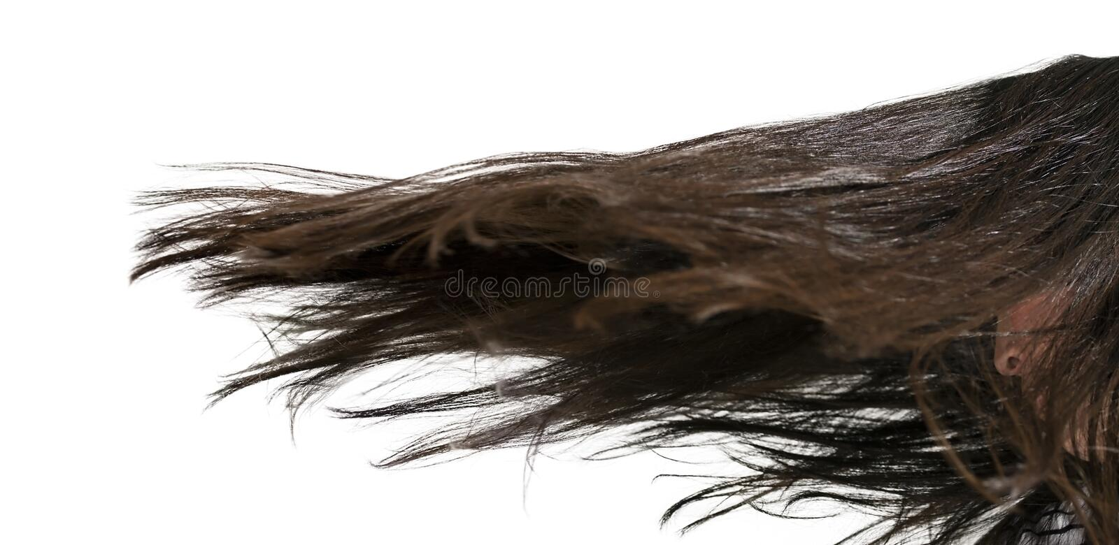 Hair Movement royalty free stock photos