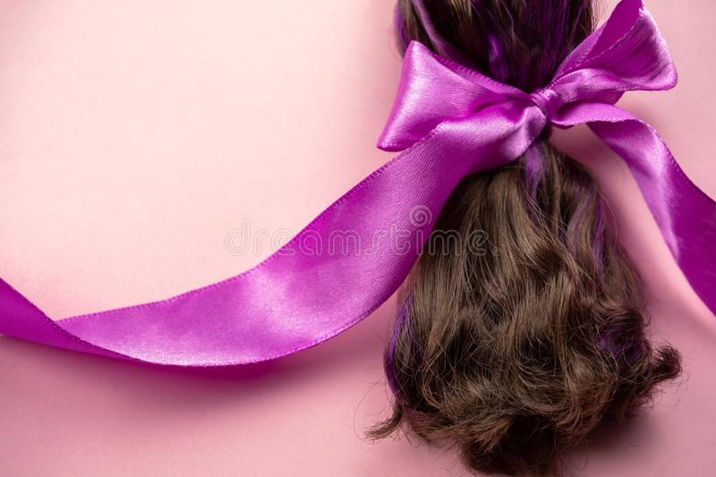 Hair with purple strands tied in a ponytail with pink satin ribbon, hair loss during cancer, hairstyles and hair care. Brown hair with purple strands tied in a stock photography
