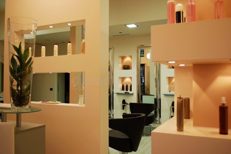 Download Hair salon stock image. Image of design, comfortable - 17332963