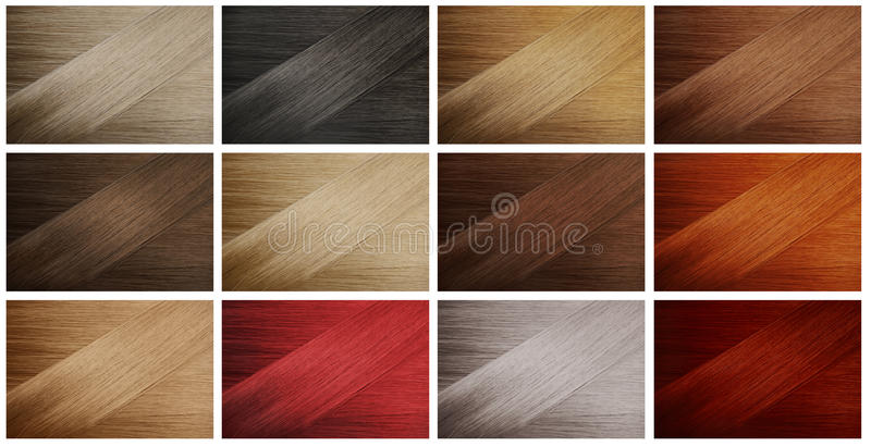 Hair Samples. Set of various hair colors samples