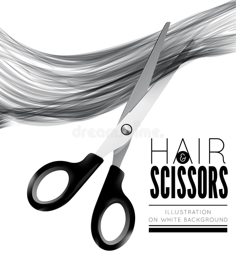 Hair And Scissors On A White Background Stock Vector ...