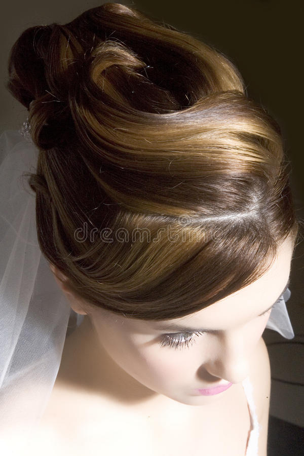 Free Hair Style Royalty Free Stock Images - 20024209
