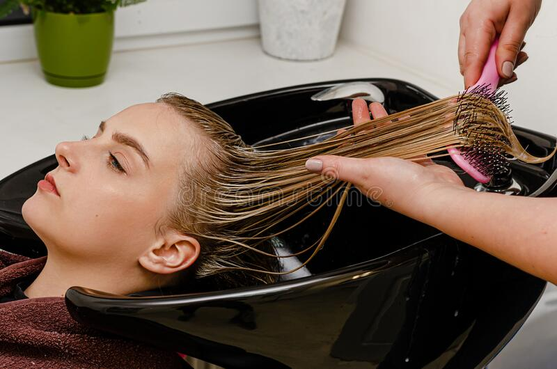 Hair stylist applying hair mask and combing clients wet hair with brush. In a black sink stock photo