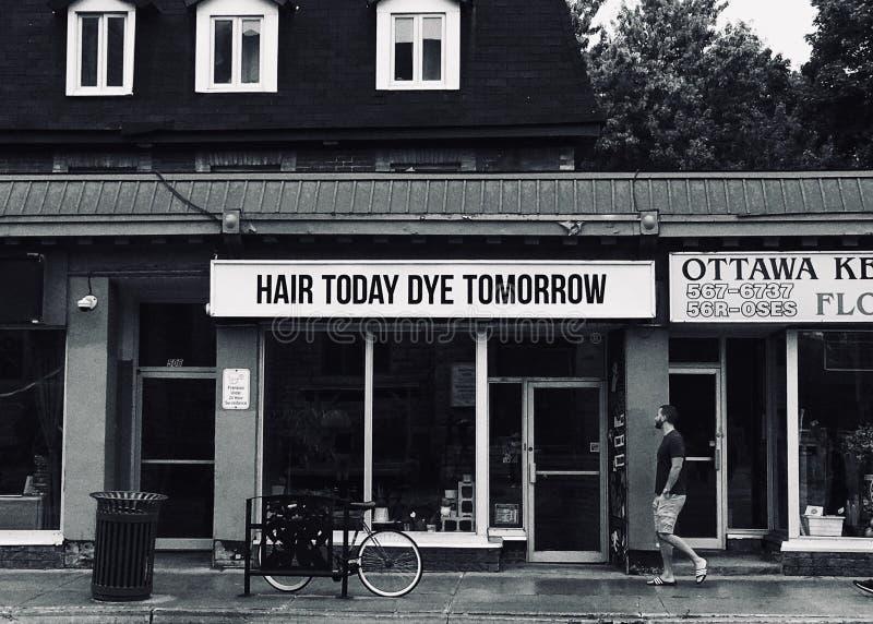 Hair Today Dye Tomorrow royalty free stock image
