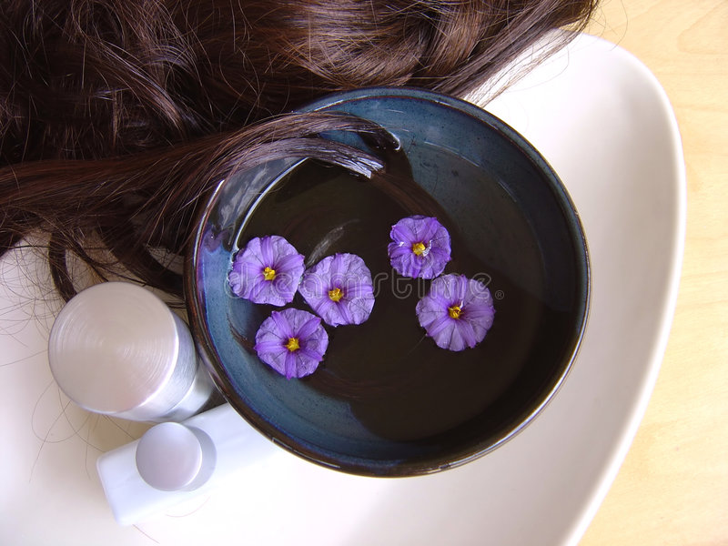 Download Hair Treatment 4 stock image. Image of flowers, maintenance - 575225
