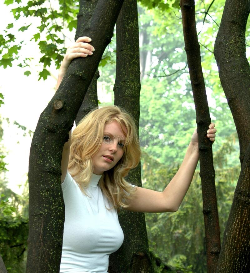 Hair, Tree, Green, Woody Plant stock images
