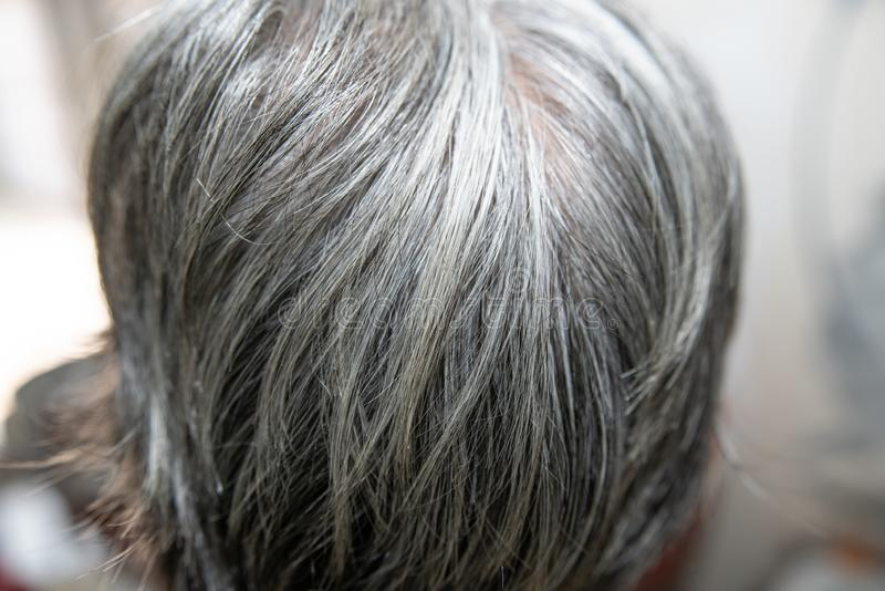 Hair is turning grey in an old human. hair turns grey - close up shot stock images