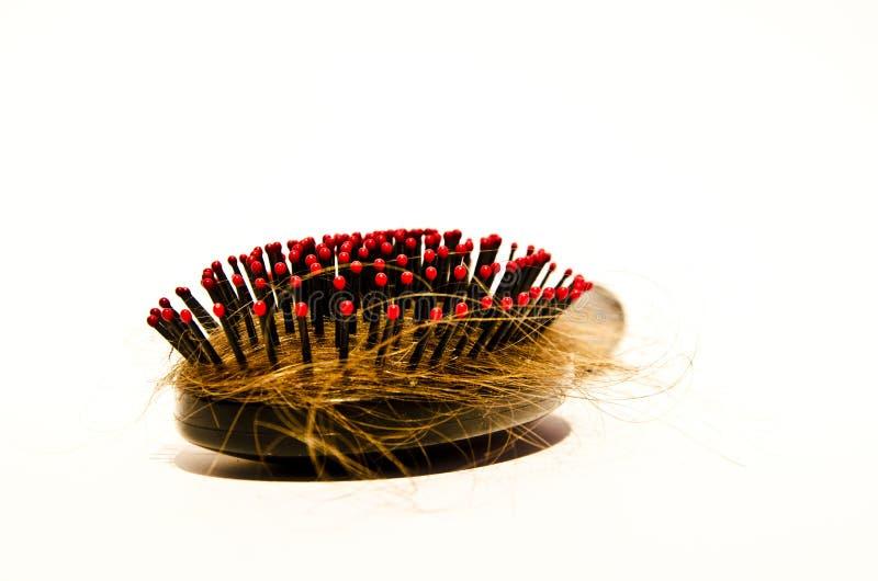 Hairbrush royalty free stock images