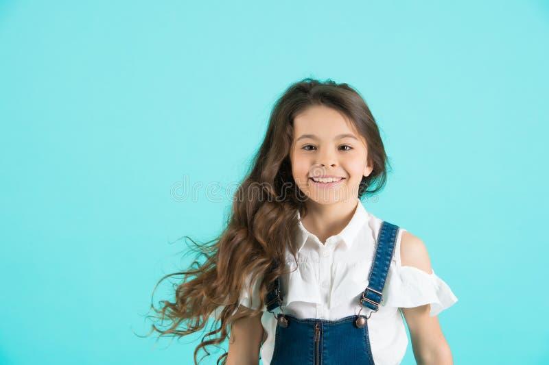 Haircare, стиль причёсок, парикмахер, парикмахер стоковые изображения rf