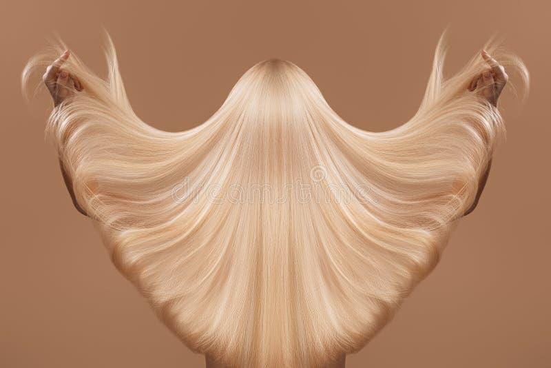 Haircareconcept stock afbeeldingen
