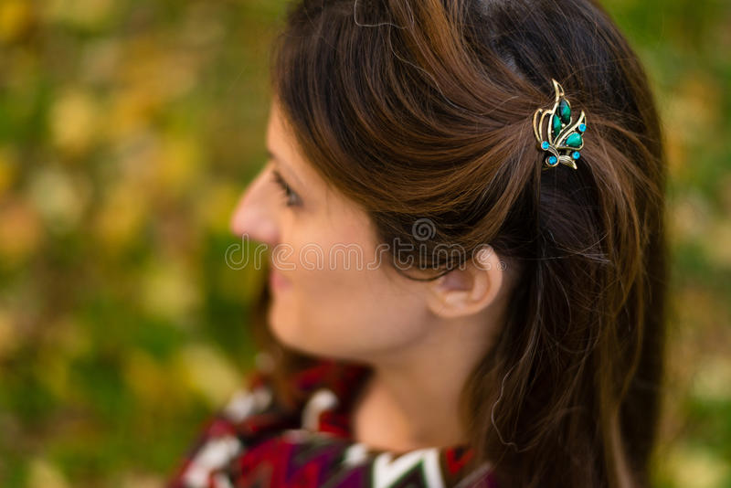 Hairclips fotografia royalty free