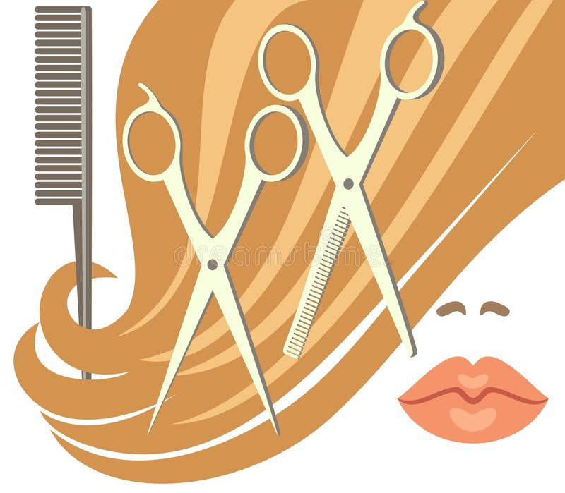 Haircut. Illustration showing the scissors, combs and haircut vector illustration