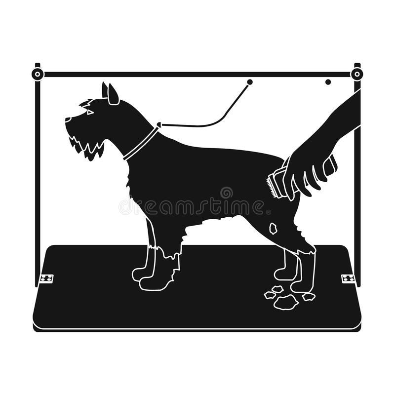 Haircut dogs in a stylish salon. Pet,dog care single icon in black style vector symbol stock illustration web. Haircut dogs in a stylish salon. Pet ,dog care stock illustration